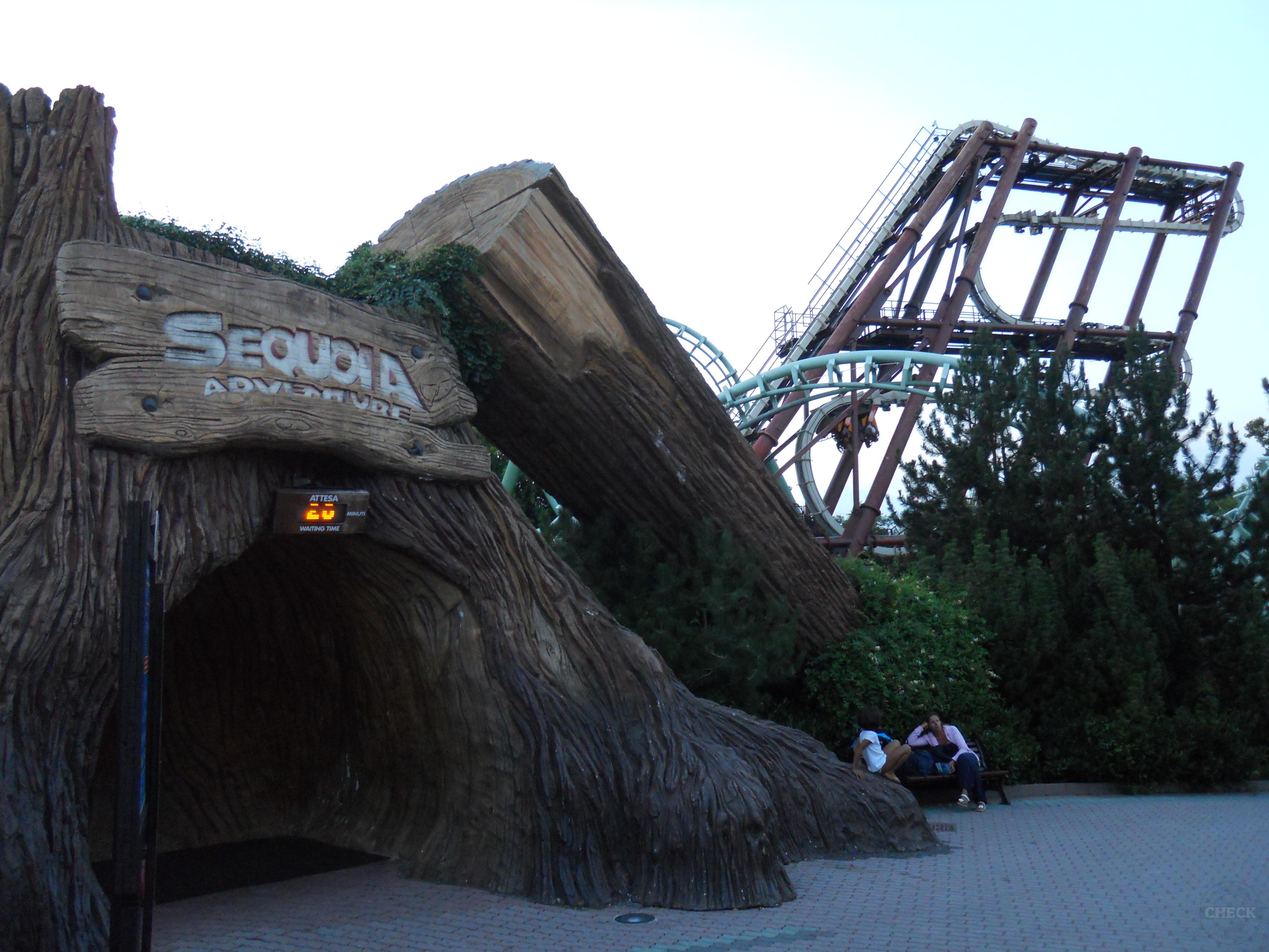 Sequioa Adventure