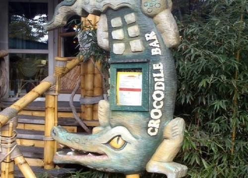 Crocodile Bar