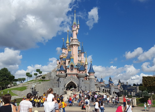 Sleeping Beauty Castle 6
