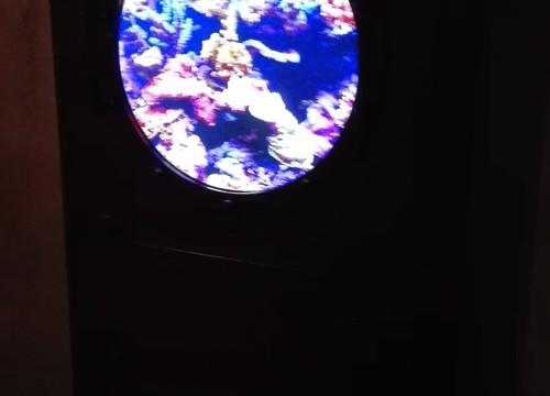 Abenteuer Atlantis