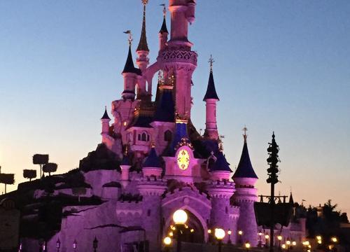 Sleeping Beauty Castle 11