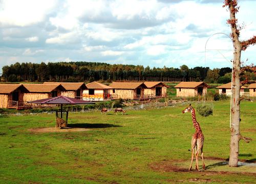 Masai Mara Lodges