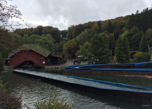 Wild River Stationseinfahrt (2016)