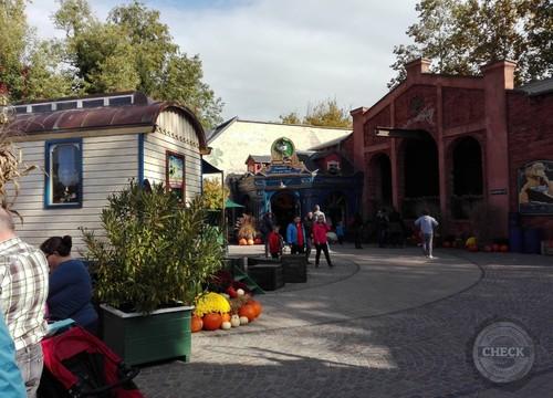 Shamerock Gifts & More