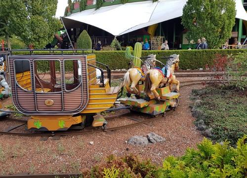 Pony Train