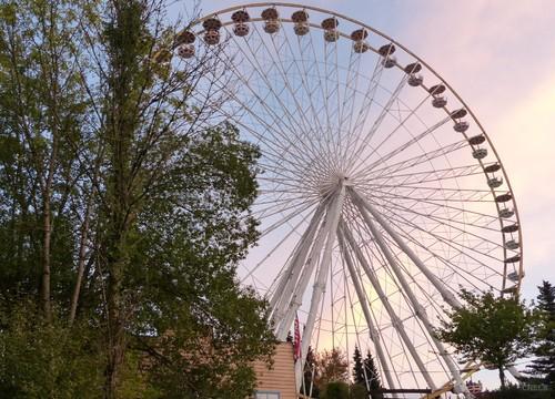 Big Wheel (2016)