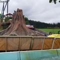 Wild Raft