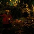 Der Wald von Plop